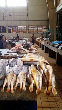 Kroiba en botervis op de Surinaamse markt.