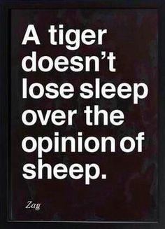 Tiger or Sheep