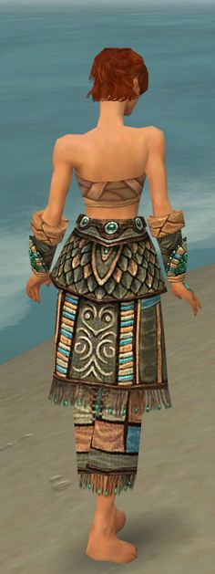 Google Image Result for http://images2.wikia.nocookie.net/__cb20100923133935/gw/images/0/0a/Monk_Elite_Luxon_Armor_F_gray_arms_legs_back.jpg