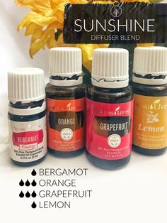 calming oils for dogs young living favorite essential oil blends for diffuser Helichrysum Essential Oil, Yl Essential Oils, Essential Oil Diffuser Blends, Young Living Essential Oils, Pretty Hand, Diffuser Recipes, Young Living Oils, Young Living Products, Aromatherapy Oils