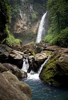 Trafalgar Falls, Dominica  Been there ....its as beautiful in person as it is in the photo..CS