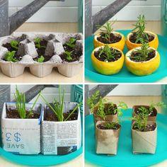 Start Your Garden The Eco-Friendly Way With These Biodegradable Seed Starters Mehr Pflanzen, weniger Plastik. Eco Garden, Indoor Garden, Garden Plants, Outdoor Gardens, Upcycled Garden, Garden Kids, Diy Horta, Organic Gardening, Gardening Tips