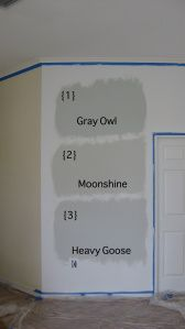[CasaGiardino] ♛ Beautiful Gray Owl Benjamin Moore For Your Interior Paint Color Idea: Example My… Gray Owl Paint, Beige Paint Colors, Paint Color Schemes, Wall Colors, House Colors, Hallway Colors, Taupe Paint, Hallway Paint, Grey Colors
