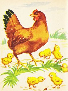 Vintage Hens and Chicks Image