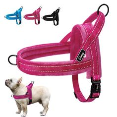 No Pull Nylon Dog Harness Soft Padded Reflective Pet Harnesses Vest For Walking Small Medium Large Dogs Adjustable XS S M L - Dog Apparel Deals French Bulldog Harness, French Bulldog Breed, Bulldog Breeds, Bulldog Puppies, French Bulldogs, Medium Dogs, Service Dogs, Backpacker, Animals