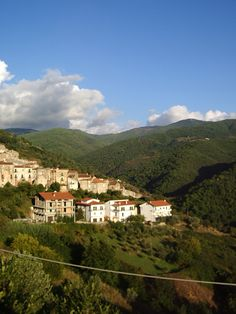 Agosto, Aprigliano - Cosenza Calabria