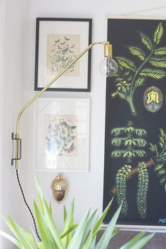 We've shown you how to make lamps before, but this project caught my eye and I'm in love with it. This brass swing arm light, from Hello Lidy, is so polished, modern, and pretty — I want two for each side of my bed.