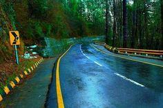 Photo by Muhammad Hamza Ali
