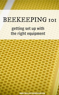 Beekeeping 101: Getting set up with the right equipment | The Elliott Homestead