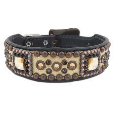 Gold Gator Designer Dog Collar (Med/Large)