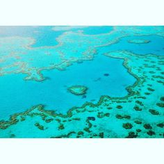 THE COLOURS OF AUSTRALIA - This pic taken from a low flying helicopter on the best Saturday morning of my life. A photo expedition over the Great Barrier Reef for a travel story. The beauty of what I saw simply took my breathe away. Pods of whales migrating large sea turtles dolphins and of course the gorgeous coral below like gorgeous lace draped across the landscape .... And the blues and silvers of the sea. The indelible memory it left will always remain. #petrinatinslay #greatbarrierreef…