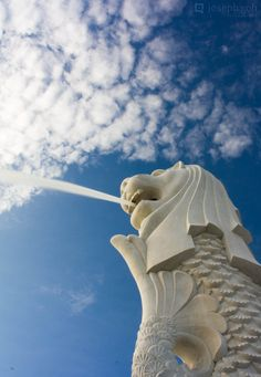 Singapore Merlion by josgoh on DeviantArt Singapore Sights, Singapore Things To Do, Singapore Photos, Singapore Malaysia, Singapore Travel, Merlion Singapore, Cool Pictures, Cool Photos, City Aesthetic