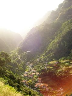 Serra d'Água - Ribeira Brava, Madeira Island Did i tell you how much i wanna travel?:)