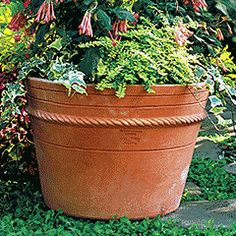 The Guy Wolff Collection: Hampton Pot