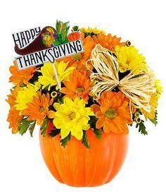 Flowers - Happy Thanksgiving Daisy Pu... $34.99