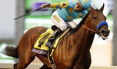 The Latest: American Pharoah wins Breeders' Cup Classic - LEXINGTON, Ky. (AP) — The latest on the Breeders' Cup, in which Triple Crown winner American Pharoah races for the last time before retiring (all times EDT): Bob Baffert, Preakness Stakes, Triple Crown Winners, American Pharoah, Thoroughbred Horse, Horse Racing, Race Horses, Beautiful Horses, Beautiful People