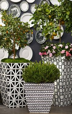 A corded-rope pattern wraps the Madison Black and White Planter in a refreshing twist of contemporary designing.