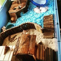 My hamster his cage theme seaside