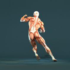 Posterior musculature pose