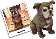 100% custom stuffed animals made to look just like YOUR dog! They're called Cuddle Clones! This is Bubbles the Pug and Boston Terrier mix and her Cuddle Clone :)