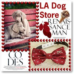 LA Dog Store by ladogstores on Polyvore