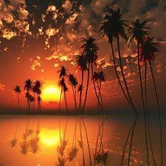 Sunset Finland, Sunrise, Celestial, World, Nature, Outdoor, Animals, Beauty, Ideas