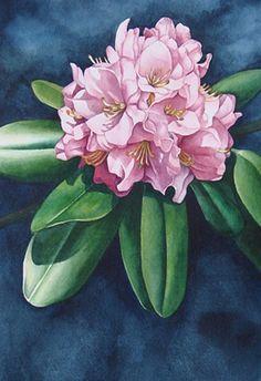 Rhododendron-Pink       Karen Benco Watercolor