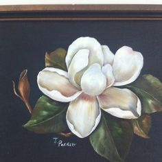 My magnolia painting Magnolia Paint, Magnolia Flower, Painting & Drawing, Watercolor Paintings, China Painting, Arte Floral, Acrylic Art, Watercolor Flowers, Painting Inspiration
