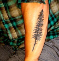forearm evergreen tree tattoo