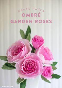 DIY Crepe Paper Ombre Garden Rose | Lia Griffith