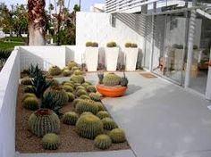 Image result for mid century succulent garden