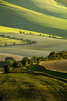 South Downs National Park near Lewes, East Sussex, England
