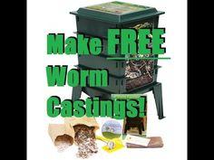 how to set up worm farms tasmania