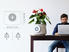 Clairy: The Most Amazing Natural Air Purifier by Clairy — Kickstarter