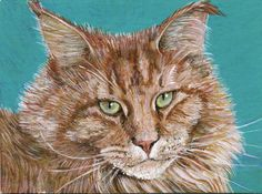 artycraftythings: ACEO's. Maine Coon cats. Red tabby 1 and 2