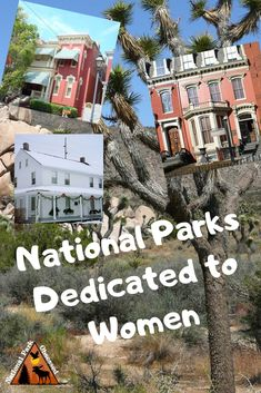 Women have/will play an important role in history. In the United States, there are ten national parks dedicated to women and their important work. Find out more about these amazing home. Travel Advice, Travel Guides, Travel Tips, Women's History, Modern History, British History, Ancient History, American History