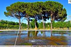 Miroir d'eau, Parc Georges Charpak. Montpellier