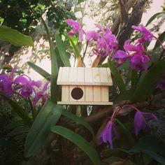 Casinha em madeira para enfeitar seu jardim, acesse: Facebook / Ateliê das Jorge