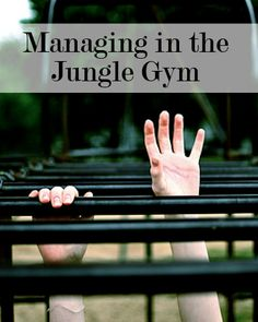{Article} As Sheryl Sandberg wrote in Lean In, instead of climbing a career ladder, we now play in a big career jungle gym.