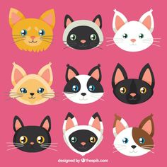 Cat faces collection Premium Vector | Premium Vector #Freepik #vector #hand #cat #hand-drawn #animals Animals And Pets, Cute Animals, Cat Crafts, Dog Tattoos, Cat Face, Animal Memes, Animal Paintings, Kittens, Pet Cats