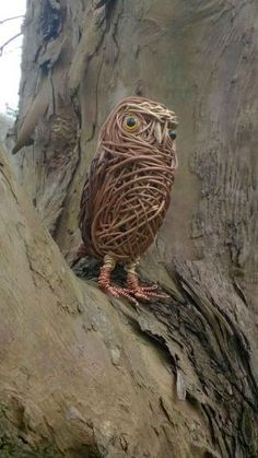 Willow Little Owl Chicken Wire Sculpture, Willow Furniture, Willow Garden, Herb Farm, Animal Art Projects, Willow Weaving, Outdoor Crafts, Little Owl, Nature Crafts