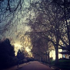 The sun sets over Battersea Park in London this afternoon 7°C I 45°F #BurberryWeather