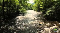 Inside look at Wears Valley, Tennessee Stuff To Do, Things To Do, Gatlinburg Tennessee, Relaxing Places, Blue Ridge Parkway, Great Smoky Mountains, My Happy Place, Mma, Eye Candy