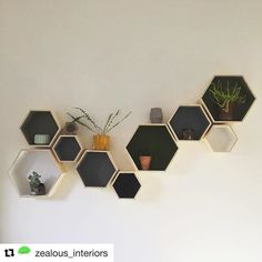 #Repost @zealous_interiors - Love how you've used our wooden hexagonal storage boxes! ・・・ Ta-da! Here's the full wall. We love the way this arrangement gives you a practical use (storage/plant pot display) and also looks good enough to be a piece of art! We had so much fun painting and arranging these. Some of the ceramics were purchased from @wearetrouva and the wooden shelving boxes are from @hobbycrafthq #artisticideas #artisticdecorideas #hexagons #hexagonal #instillationdecor…