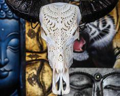 Hand Carved Tribal BUFFALO Skull  Longhorns / Horns/ by AureusArts