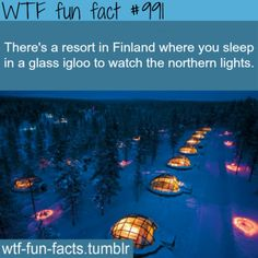 WTF Fun Facts is updated daily with interesting & funny random facts. We post about health, celebs/people, places, animals, history information and much more. New facts all day - every day! Vacation Places, Dream Vacations, Vacation Spots, I Want To Travel, Beautiful Places To Travel, Oh The Places You'll Go, Cool Places To Visit, My Academia, Wtf Fun Facts
