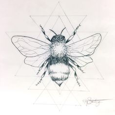"""Next tattoo idea for me? I think yes. #honeybee #beetattoo #honeybeetattoo…"