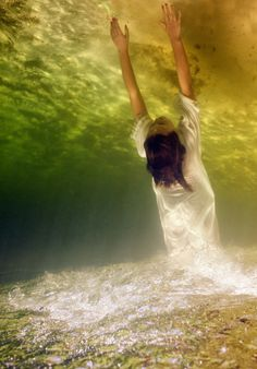 OceanSong - Projects - Underwater Photography  by Elena Kalis