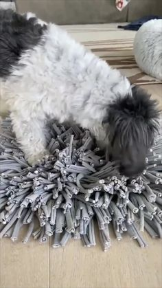 Making a snuffle mat is a quick and easy way to keep your dog entertained for cheap. Homemade Stuffed Animals, Homemade Dog Toys, Pet Dogs, Dogs And Puppies, Doggies, Cute Funny Babies, Dog Puzzles, Dog Health Care, Animals For Kids
