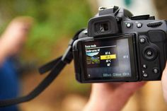 Close up photography tips from our professional photographer set the right focus points